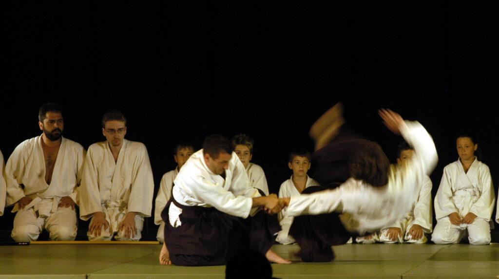 tecniche daito ryu